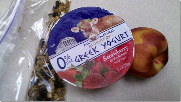 yogurt snack